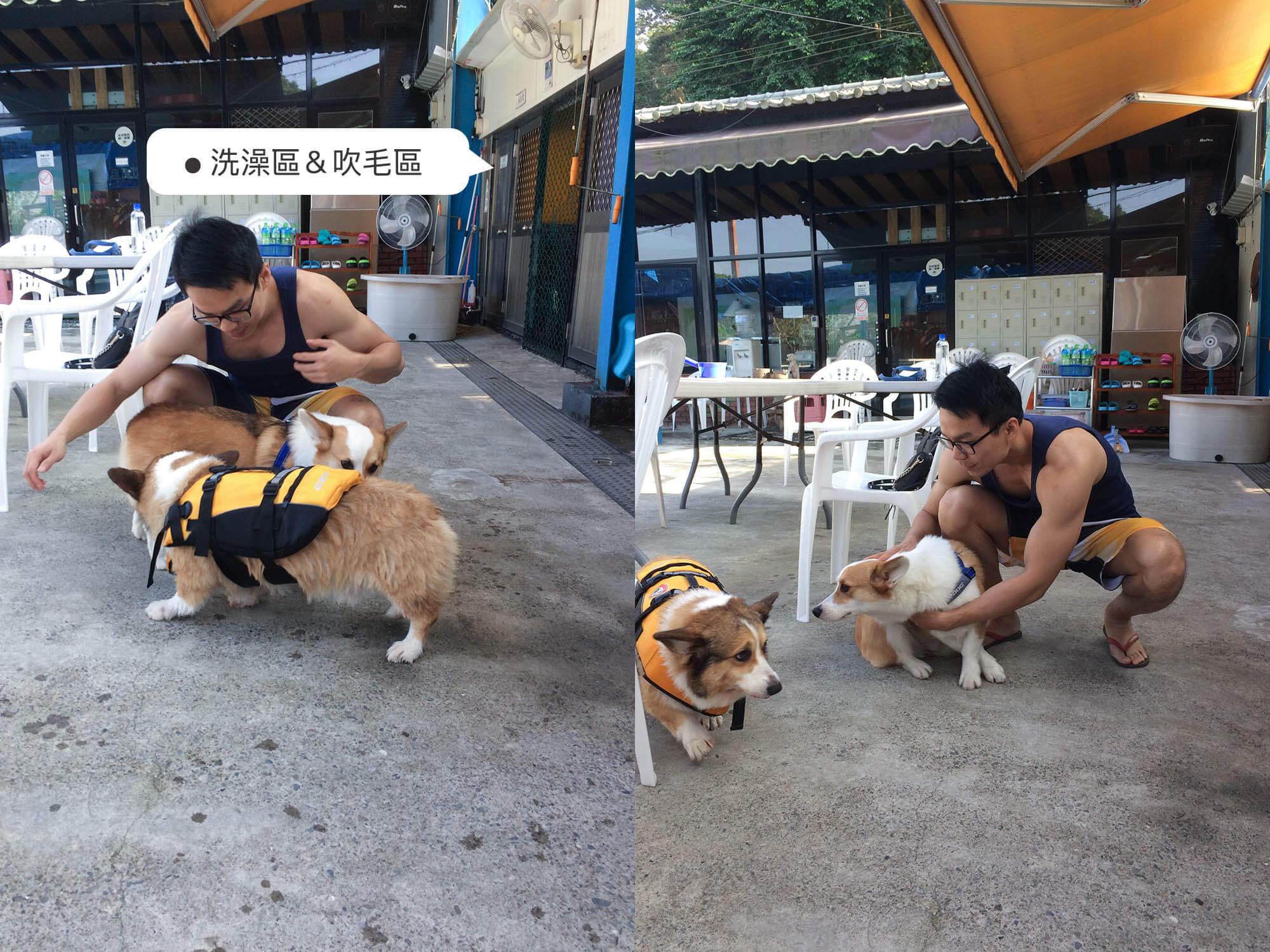 金牌Mi'lu柯基_Gooddog狗狗游泳池