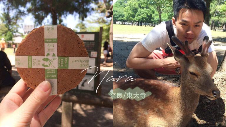 奈良公園、東大寺|交通&到底吃什麼、玩什麼?