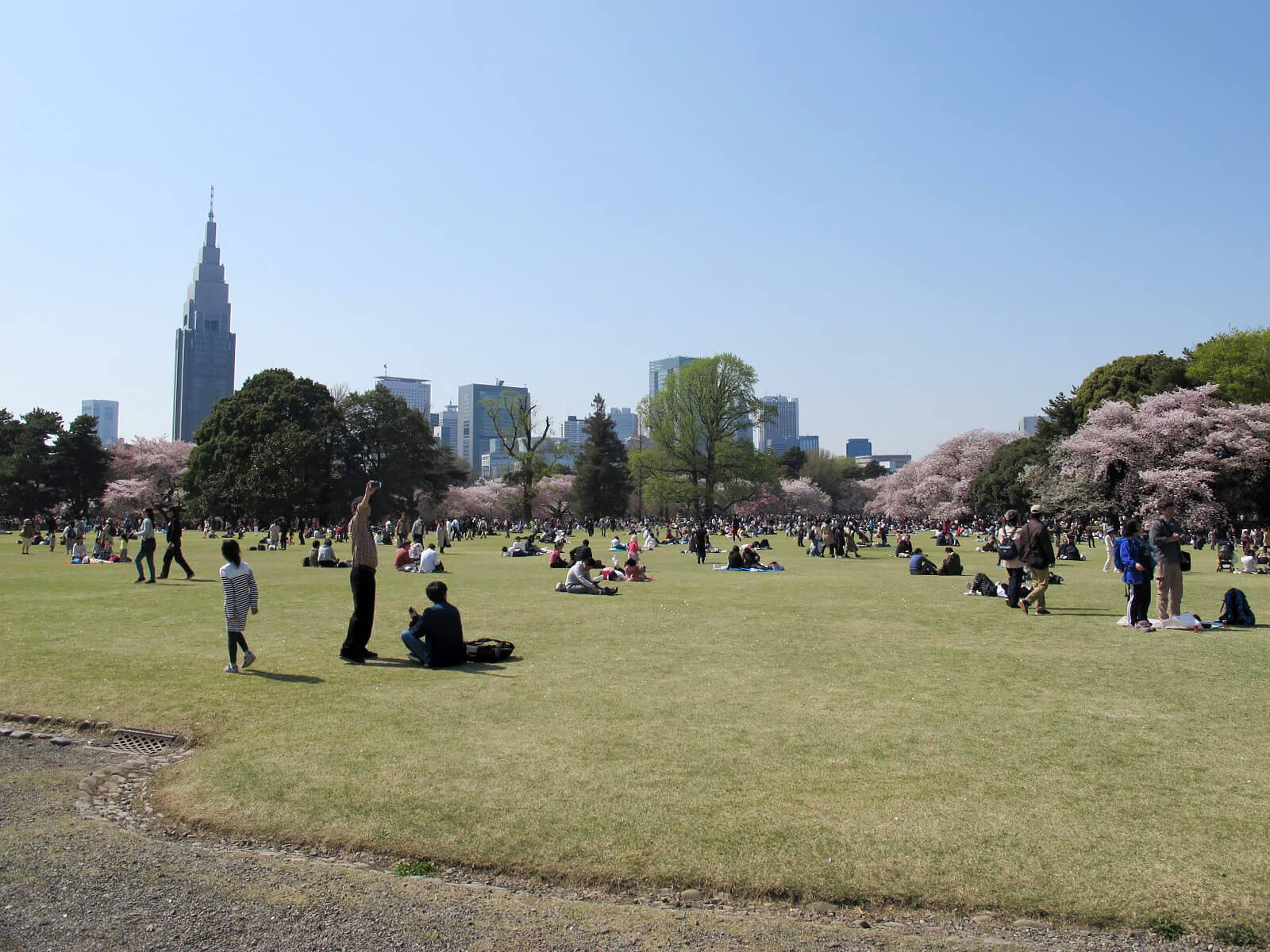 新宿御苑英式庭院