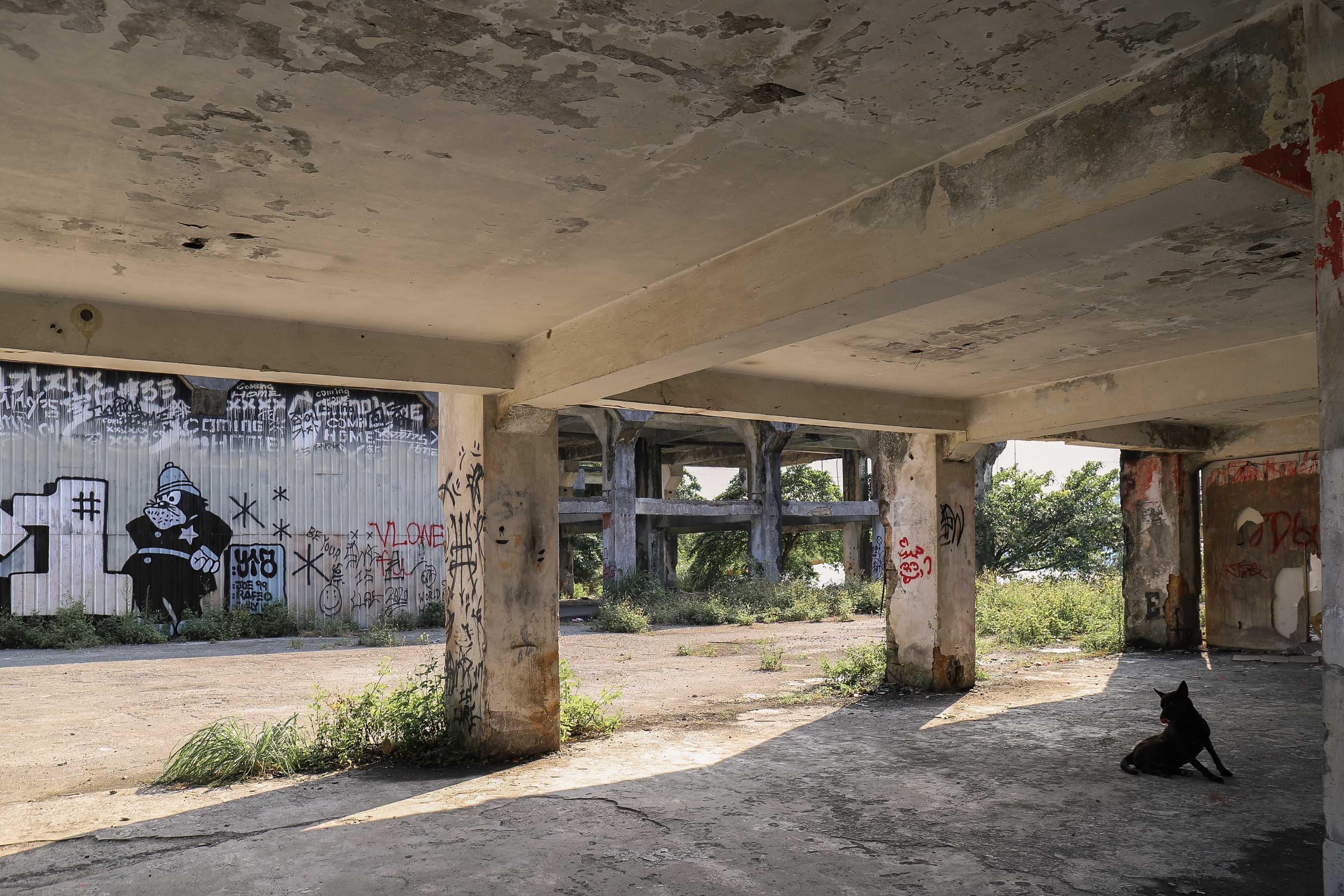 阿根納造船廠4