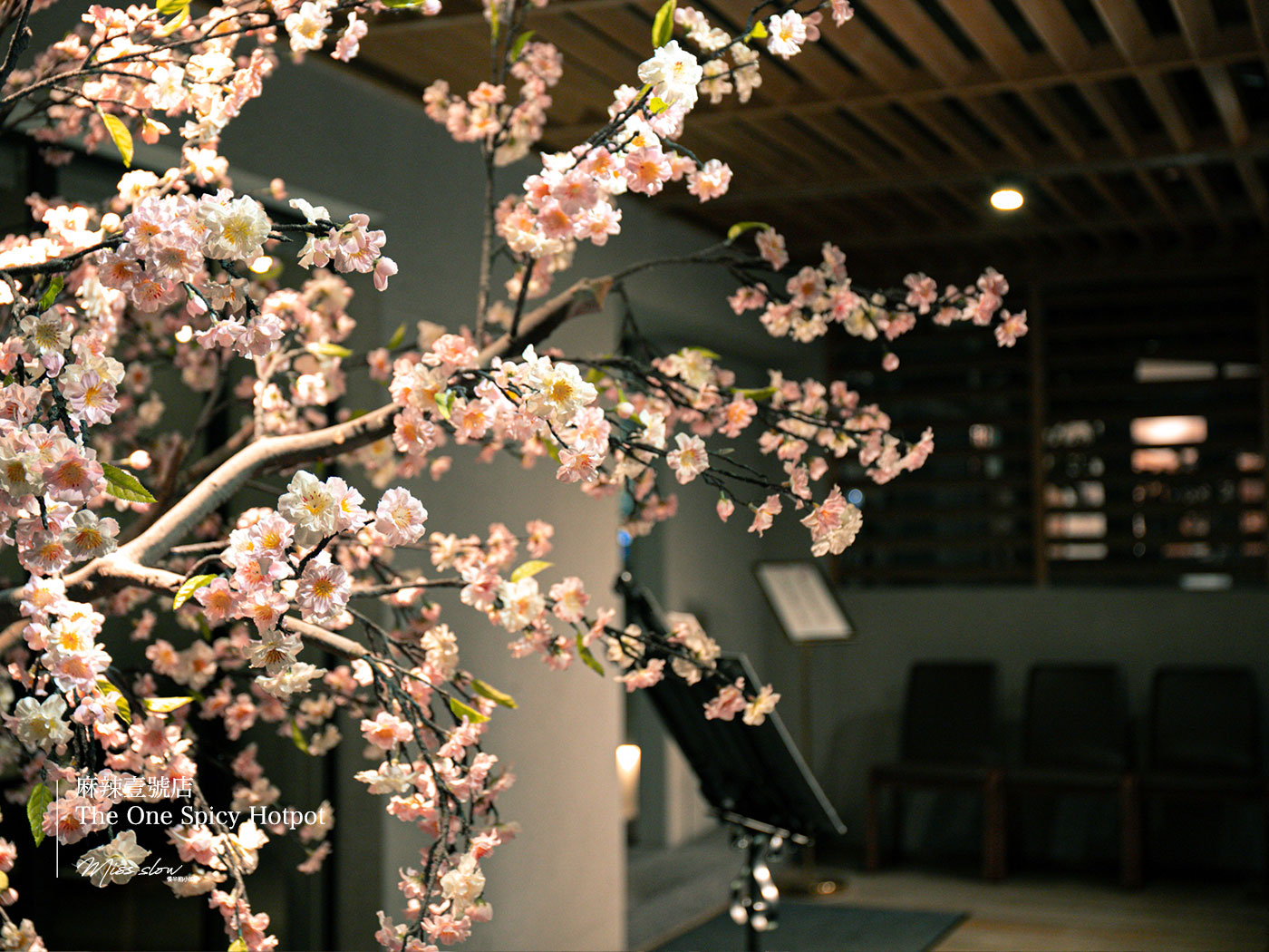 麻辣一號店店門口櫻花樹