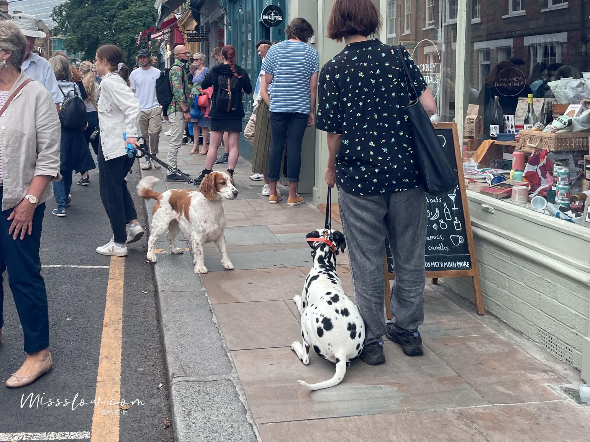 哥倫比亞花市-帶狗來買花